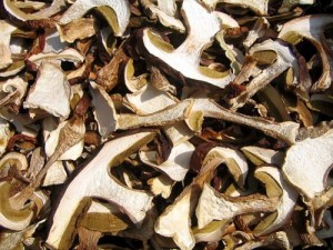 Белый сушёный гриб