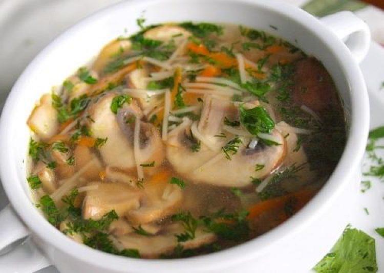 Рецепты супа с шампиньонами